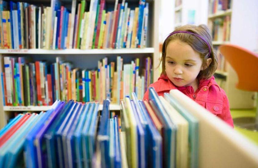 livros para a fase de alfabetização
